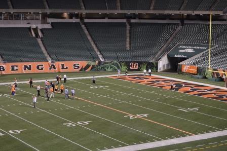 A Stadium Experience ~ 2014