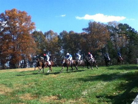 Day at Montpelier Hunt Races