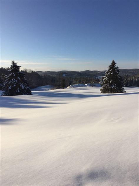 Vermont Christmas 2017