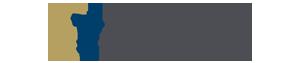 Divisha Kapur Custom Logo