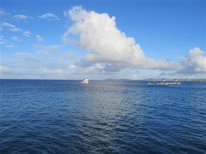 A few pics from Bonaire!