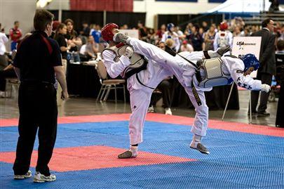 2011 Taekwondo Tour
