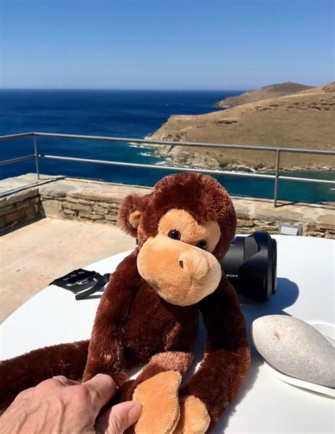 Max The Travel Monkey