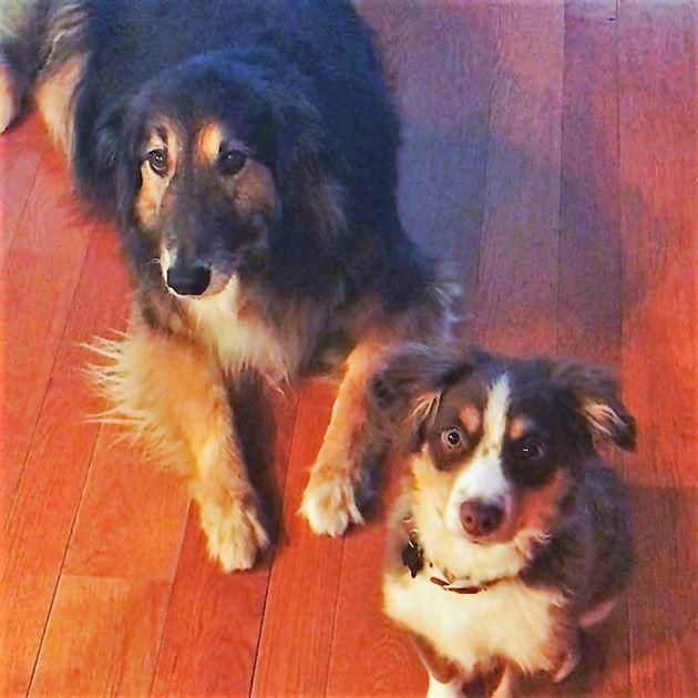 Rudy and Finn