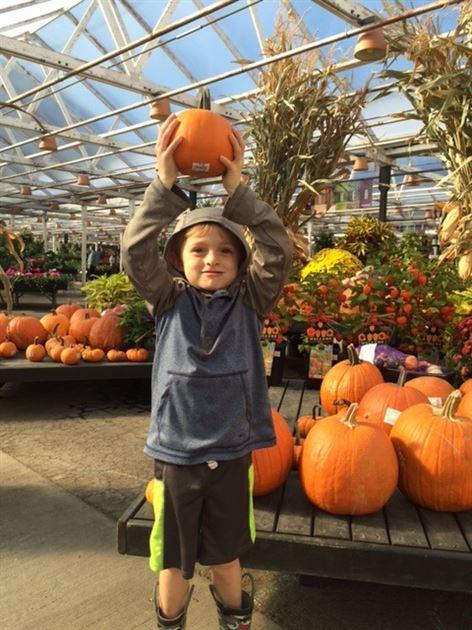 Fall Pumpkin Shopping