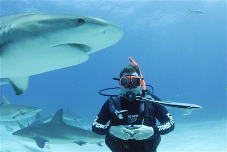 Sean's Shark Dive