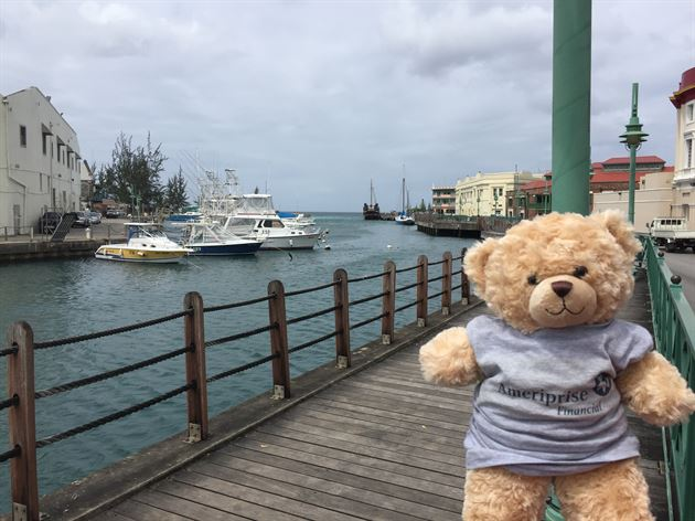 Adventures of Travel Bear