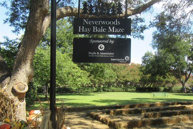 Volunteering at Dallas Arboretum