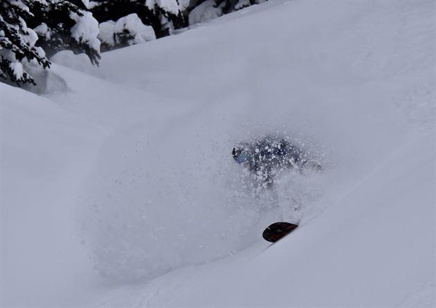 My Alpine Adventure, 2018
