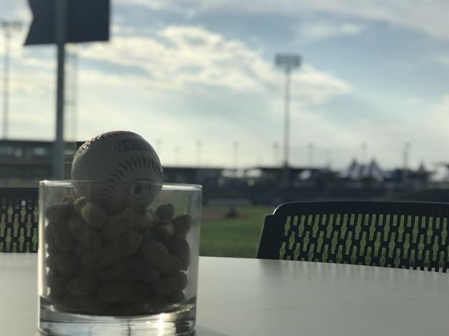 Client Experience - Baseball