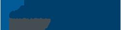 Next Level Financial Advisors Custom Logo