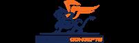 Steward Concepts Custom Logo
